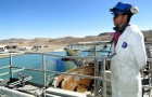 Innovación en desalinización: El uso de agua de mar con miras al futuro